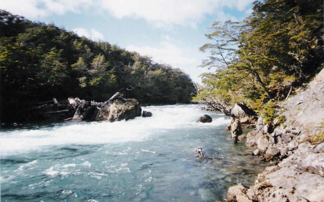 ¿De qué manera se puede adquirir el dominio del derecho de aprovechamiento de aguas?